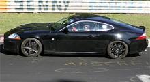 Jaguarhybrid?